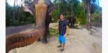 Σέλφι με υπογραφή ελέφαντα!