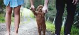 """Έκανα το σκυλί… παιδί για να """"κλείσουν"""" τα στόματα"""