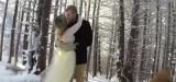 Ζευγάρι έβαλε τον σκύλο του να «βιντεοσκοπήσει» τον γάμο τους – Δείτε το αποτέλεσμα