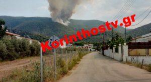 Μεγάλη φωτιά σε δασική έκταση στο Ρυτό Κορινθίας