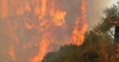 Θερμό επεισόδιο με 130 πυρκαγιές το περασμένο Σαββατοκύριακο – Τι φοβάται η κυβέρνηση